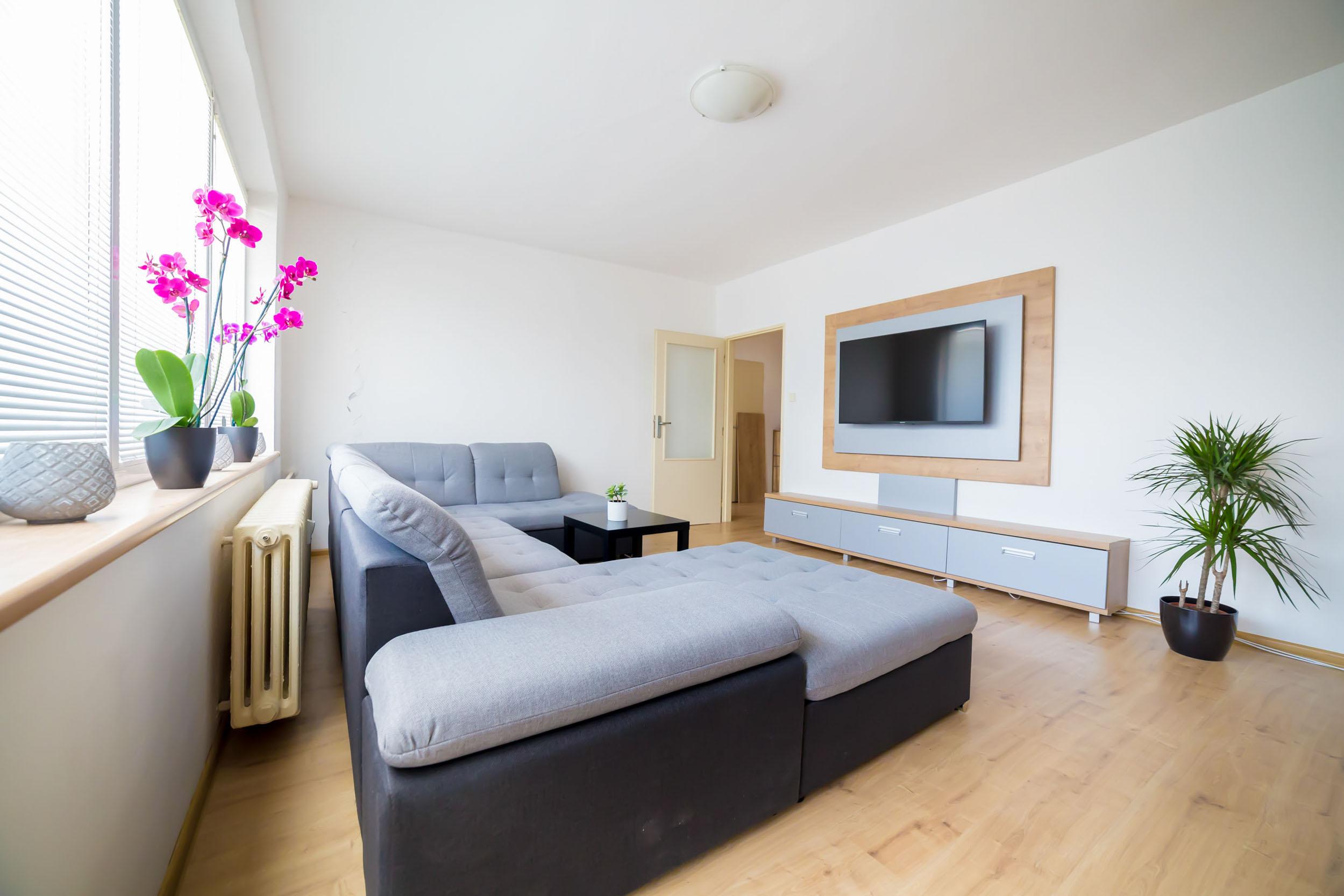opava reality televize sedacka radiator kvetina dvere svetlo zaluzie okno stul podlaha orchidej
