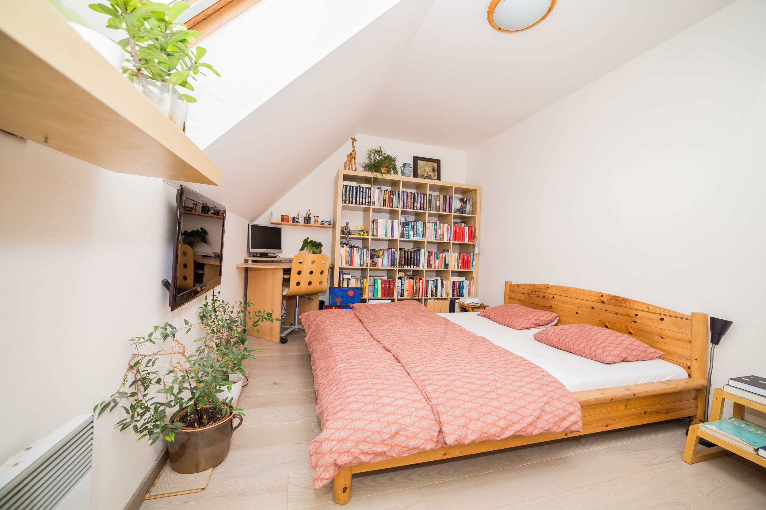 opava reality knihovna postel kvetina svetlo radiator televize pocitac zirafa police stul zidle