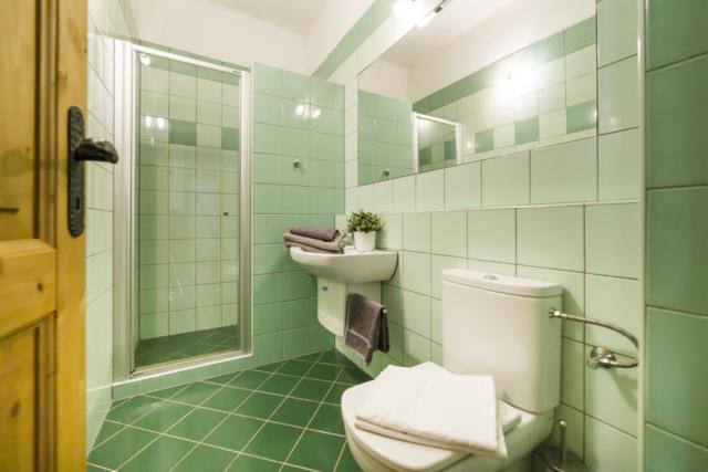 koupelna apartman radunka obklady zelena kvetina rucnik zachod sprcha zrcadlo prodej domu radun linda bittova