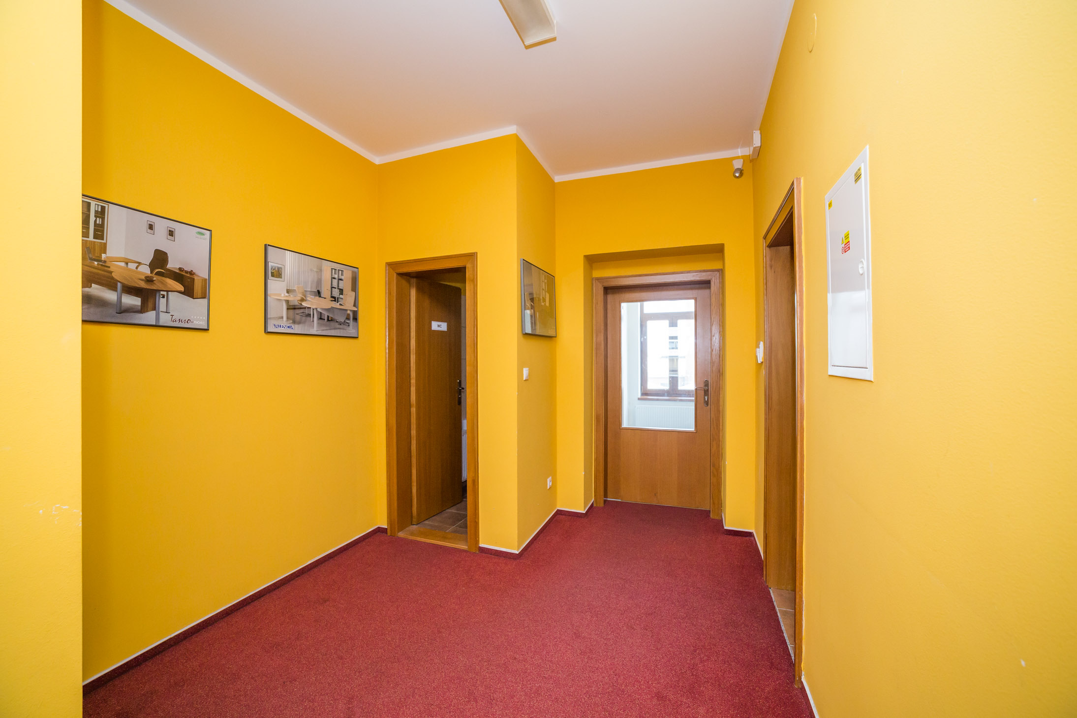 opava reality koberec zluta stena obraz dvere svetlo jistice strop zachod