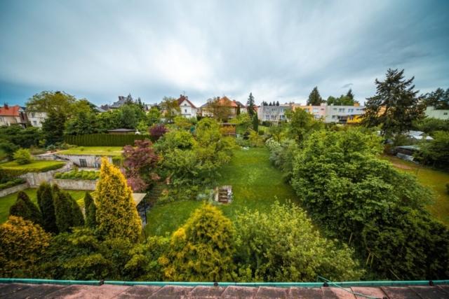 vyhled zahrada anglistova strom trava nebe dum strecha