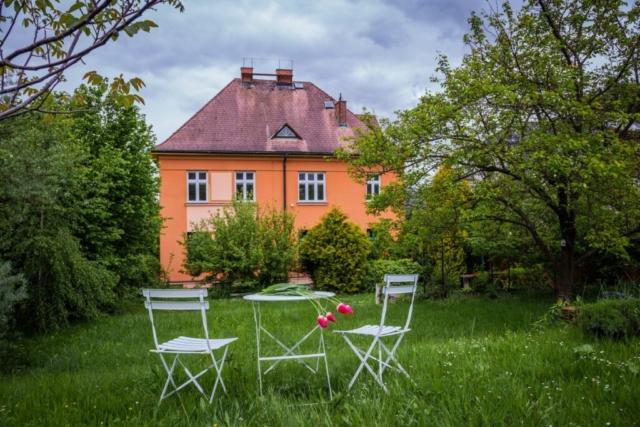 stul zidle tulipan englisova opava rodinny dum strom zahrada
